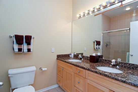 Real Estate Photography - 616 W Fulton, Unit 715, Chicago, IL, 60661 - Master Bathroom