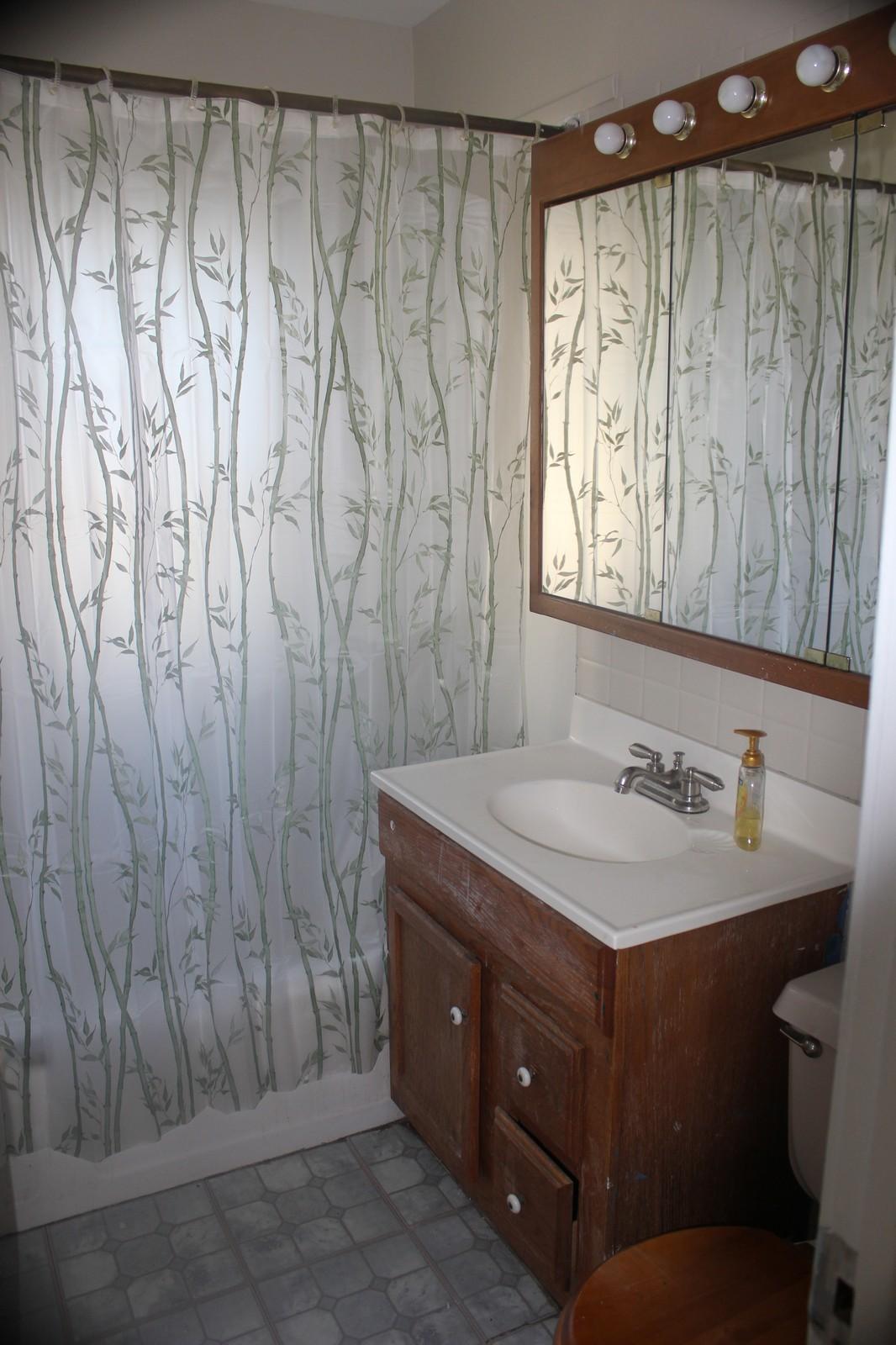 Real Estate Photography - 9131 Marion, Morton Grove, IL, 60053 - Bathroom