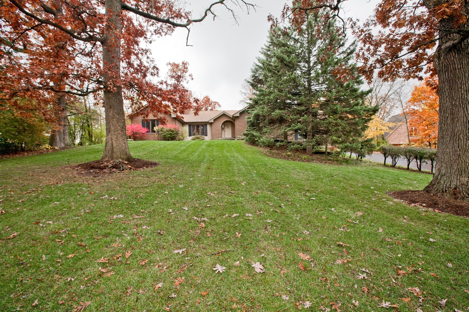 Real Estate Photography - 1831 Elmore, Downers Grove, IL, 60515 - Front Yard