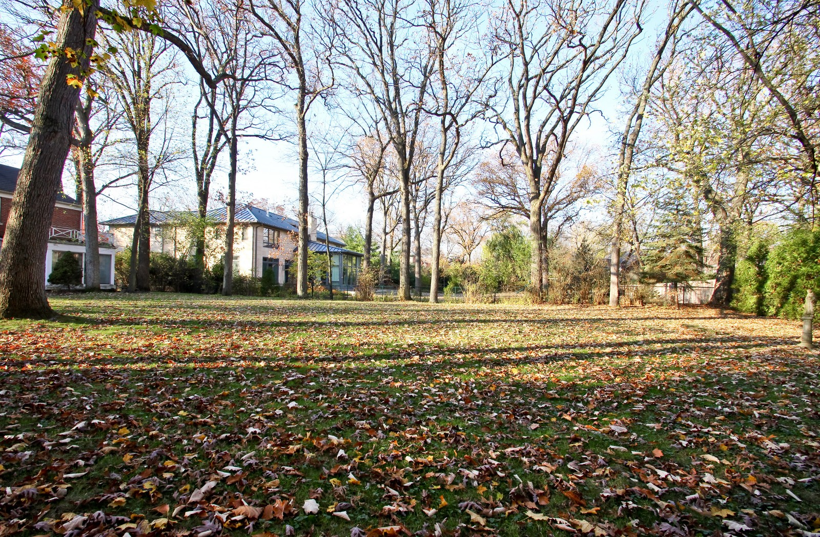Real Estate Photography - 231 Woodlawn Ave, Winnetka, IL, 60093 - 231 Woodlawn Ave, Glencoe yard view from East to W