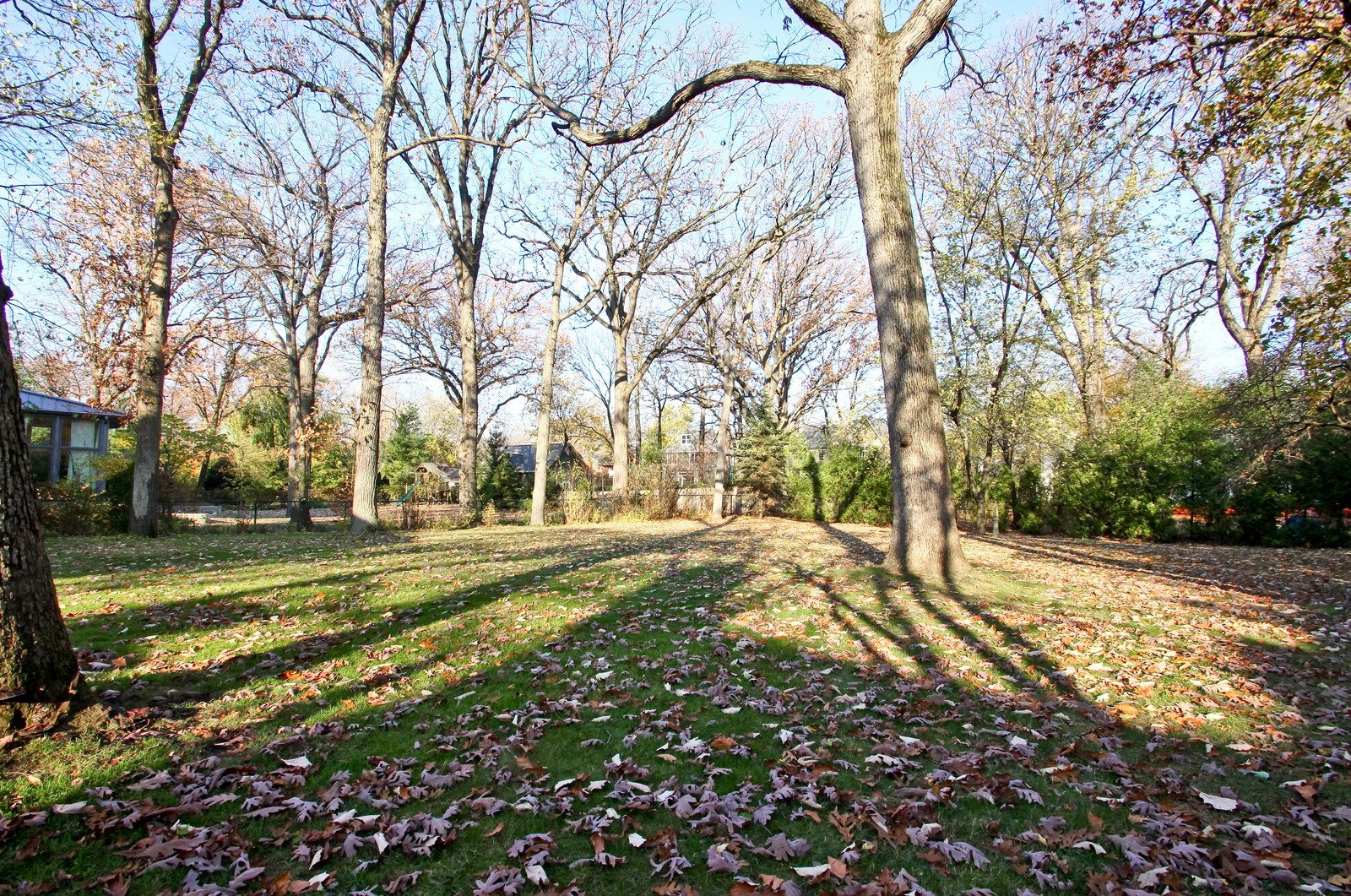 Real Estate Photography - 231 Woodlawn Ave, Winnetka, IL, 60093 - 231 Woodlawn Ave, Glencoe view of the yard from th