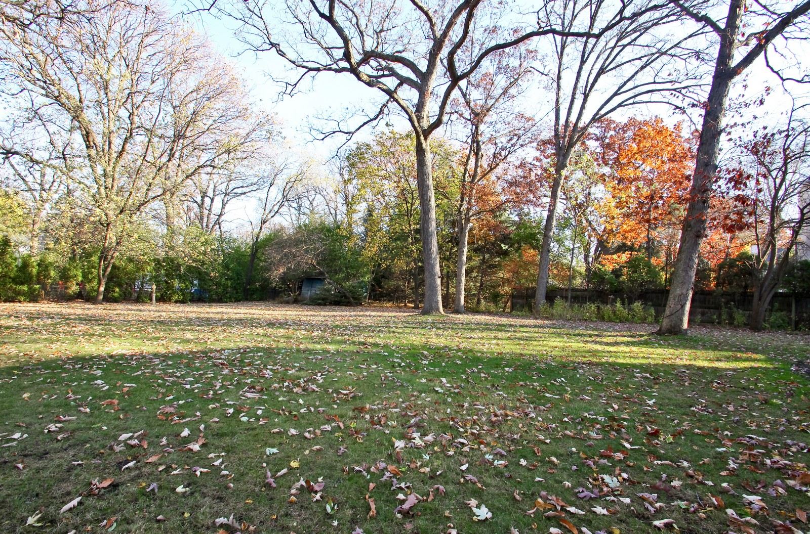Real Estate Photography - 231 Woodlawn Ave, Winnetka, IL, 60093 - 231 Woodlawn Ave, Glencoe view of yard from Small