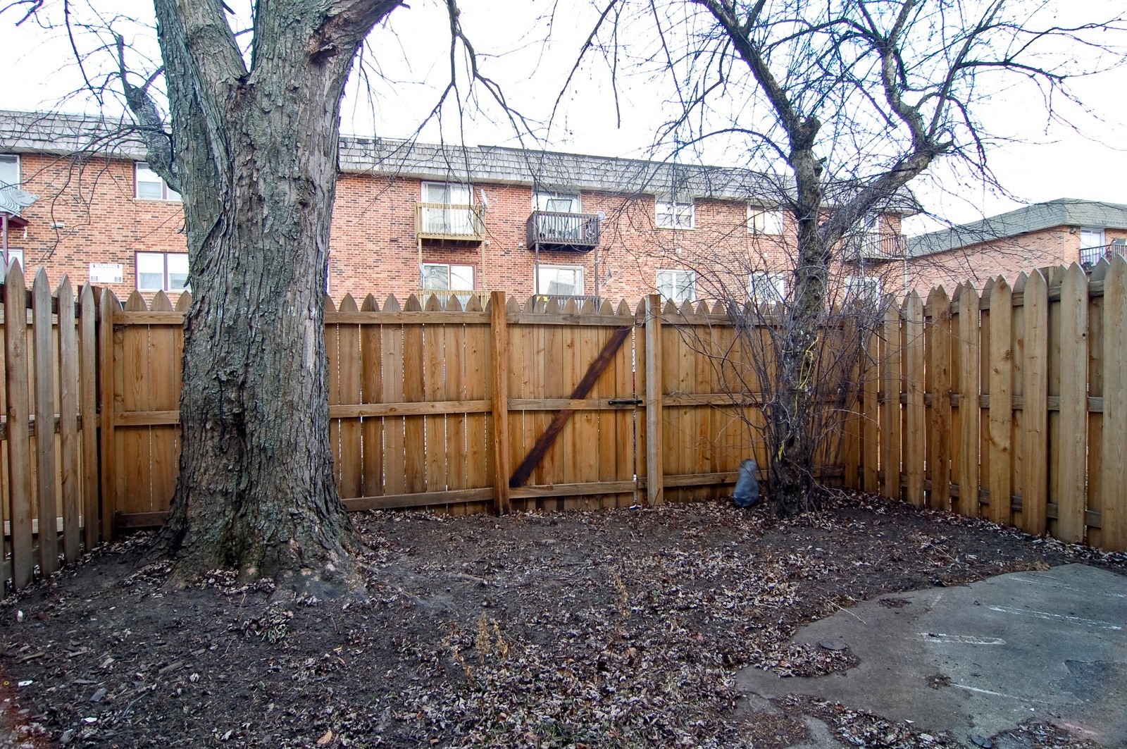 Real Estate Photography - 1623 McKool, Streamwood, IL, 60107 - Back Yard