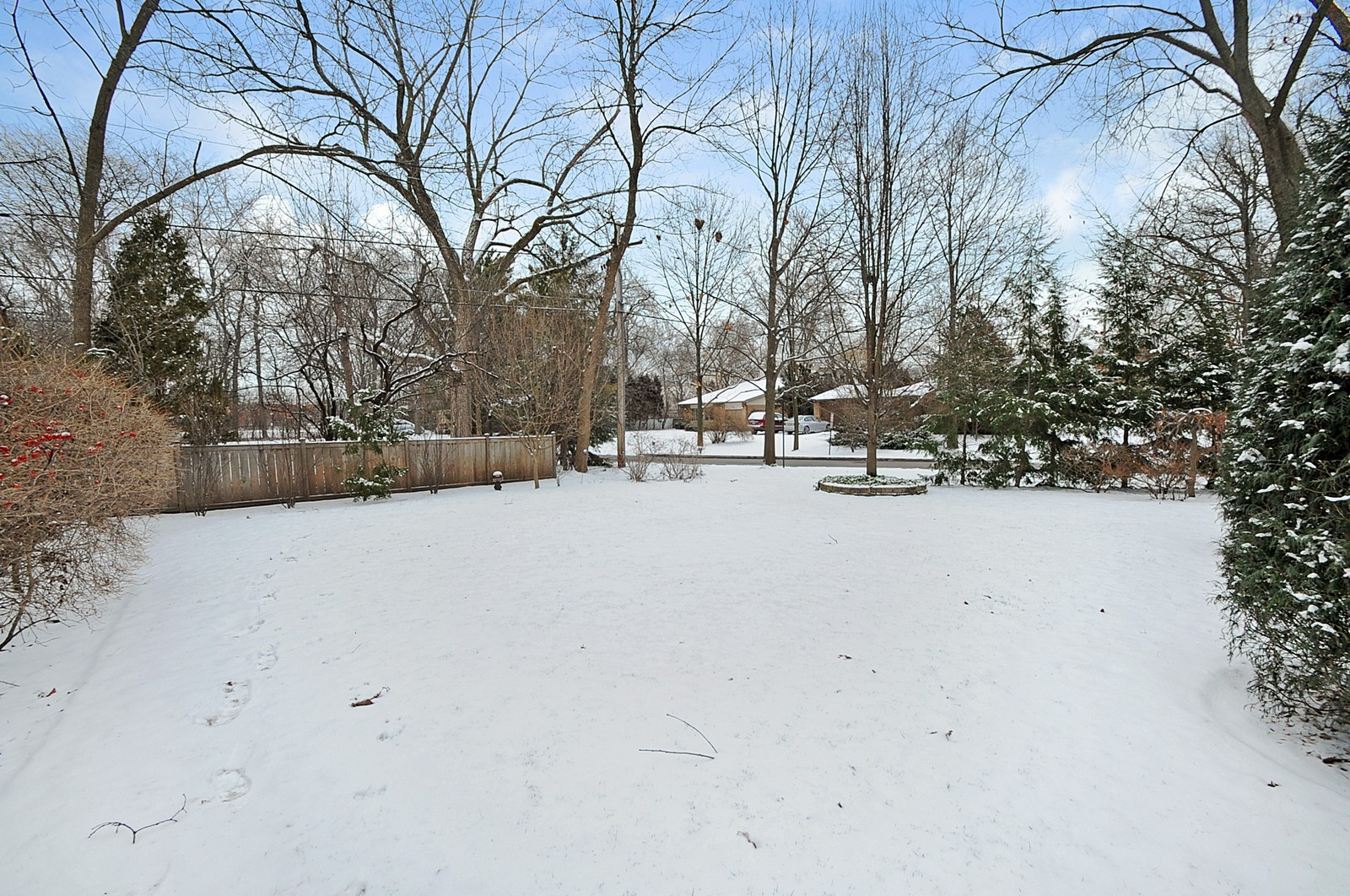 Real Estate Photography - 178 Indian Tree, Highland Park, IL, 60035 - Back Yard