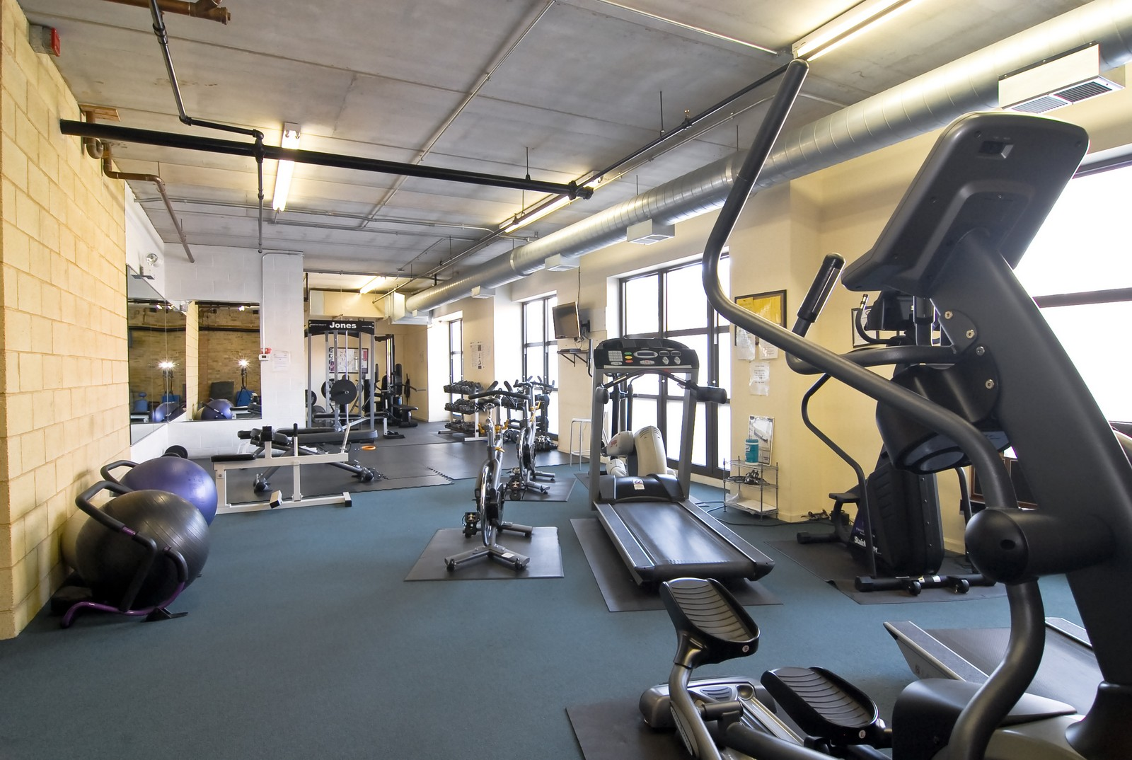 Real Estate Photography - 1735 W Diversey, Unit 210, Chicago, IL, 60657 - Fitness Room