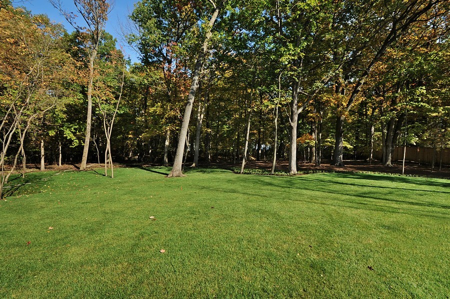 Real Estate Photography - 561 Circle Ln, Lake Forest, IL, 60045 - Back Yard