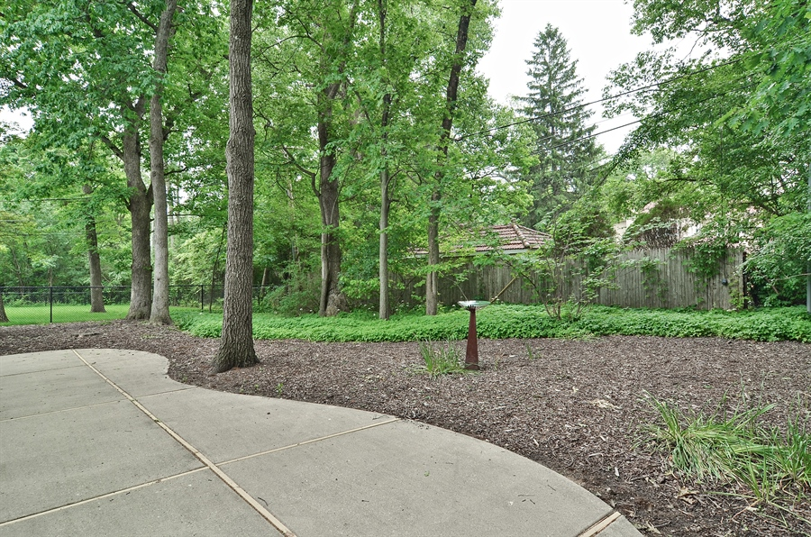 Real Estate Photography - 1060 Ridgewood, Highland Park, IL, 60035 - Back Yard