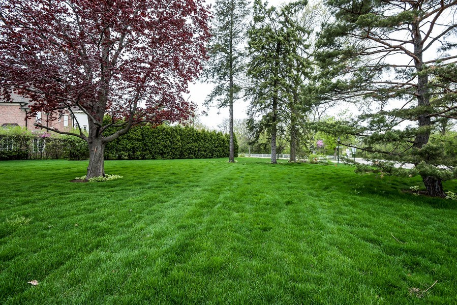Real Estate Photography - 77 Overlook Dr, Golf, IL, 60029 - Back Yard