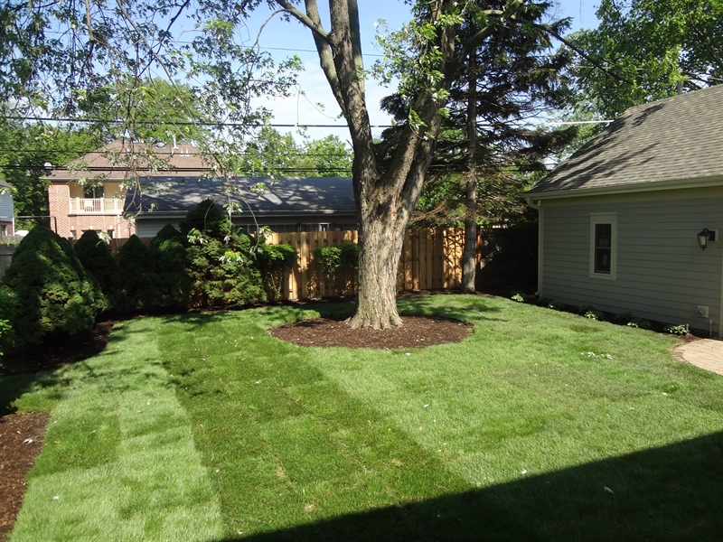 Real Estate Photography - 915 Rolling Pass Ave, Glenview, IL, 60025 - Backyard