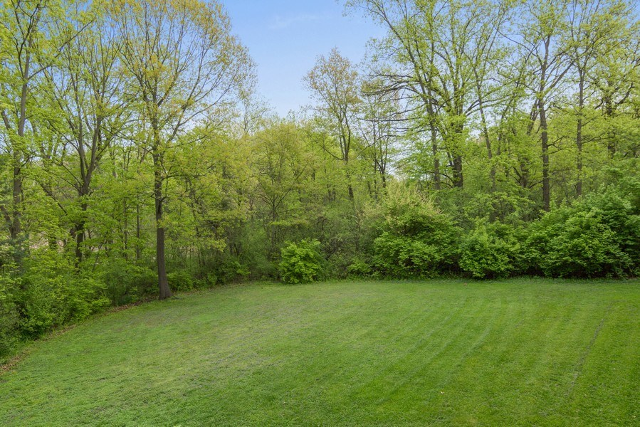 Real Estate Photography - 26709 N Countryside Lake Dr, Mundelein, IL, 60060 - Back Yard