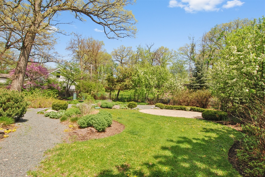 Real Estate Photography - 807 Forest Ave, River Forest, IL, 60305 - Back Yard