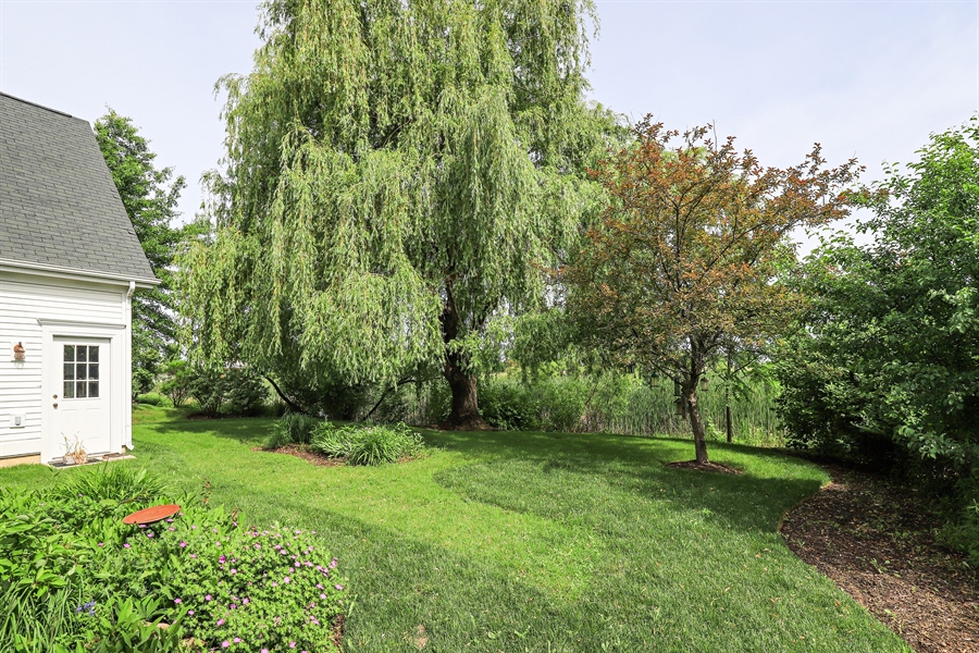 Real Estate Photography - 1128 Hedgerow Dr, Grayslake, IL, 60030 - Back Yard