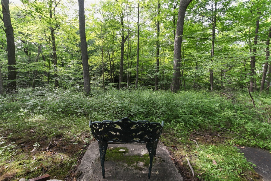Real Estate Photography - 349 Woodland, Highland Park, IL, 60035 - Rear yard