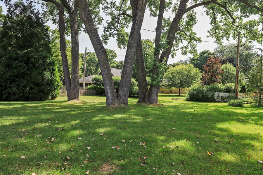 Real Estate Photography - 757 Lincoln Ave, Lake Bluff, IL, 60044 - Back Yard