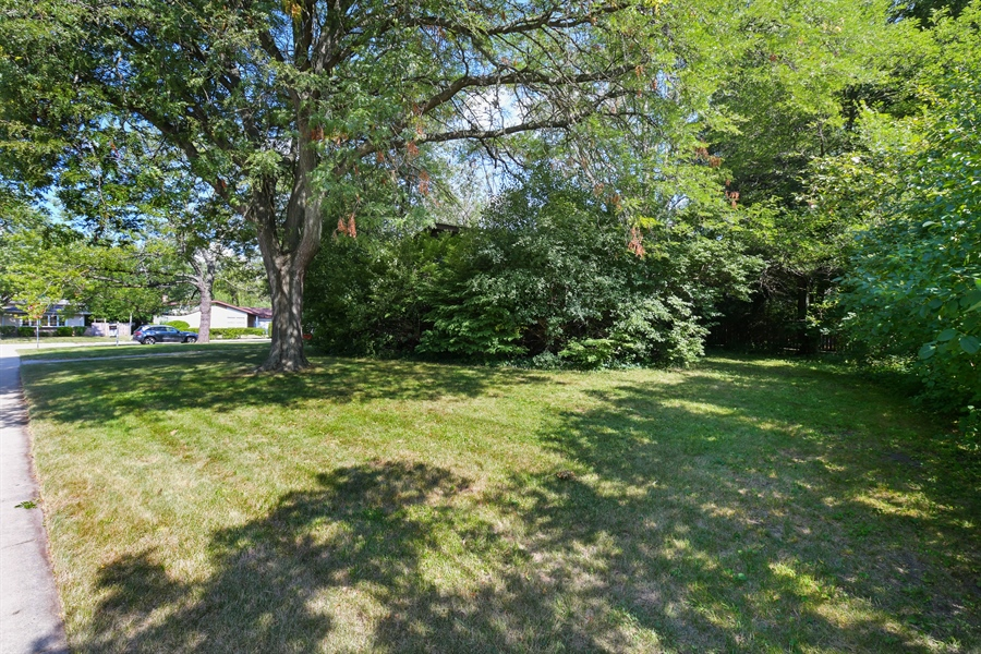 Real Estate Photography - 701 Pine Street, Deerfield, IL, 60015 - Rear View