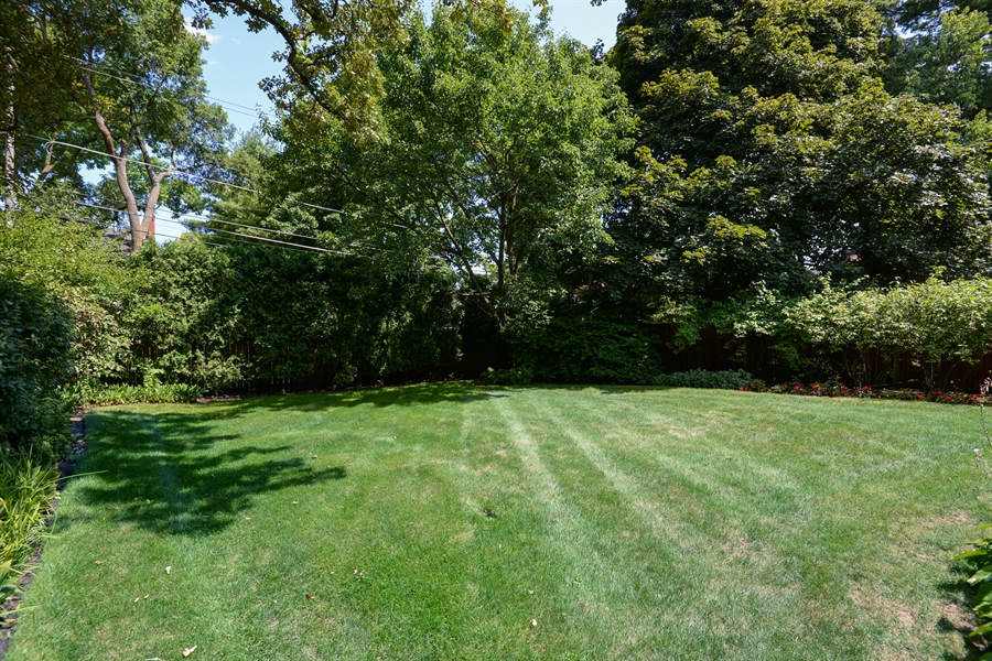 Real Estate Photography - 925 Sheridan Rd, Evanston, IL, 60202 - Back Yard