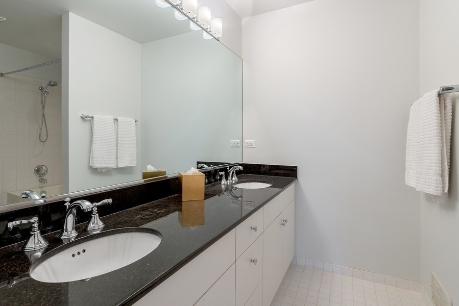 Real Estate Photography - 1445 N Cleveland, Unit A, Chicago, IL, 60610 - Master Bathroom