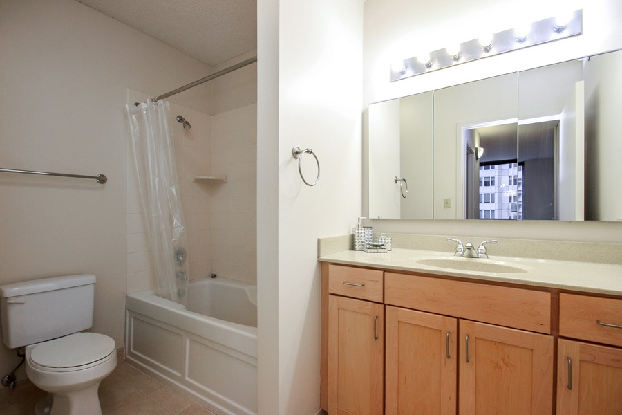 Real Estate Photography - 222 N Columbus, 2809, Chicago, IL, 60601 - Master Bathroom
