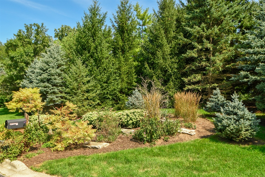 Real Estate Photography - 30 Golf View Lane, Frankfort, IL, 60423 - Front Yard