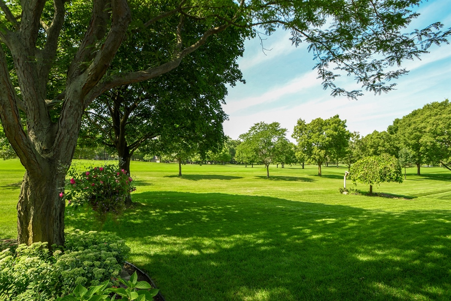 Real Estate Photography - 30 Golf View Lane, Frankfort, IL, 60423 - Back Yard