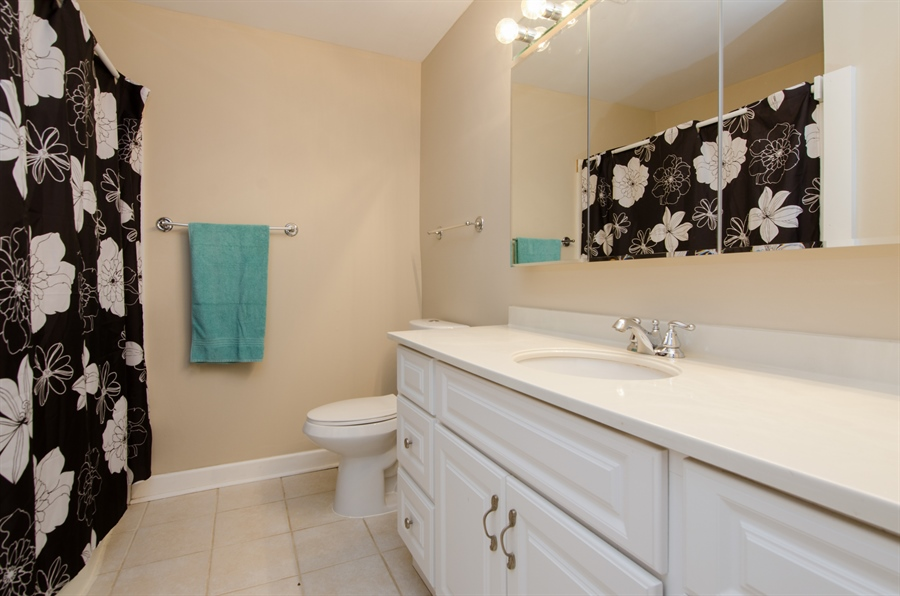 Real Estate Photography - 1745 Robin Walk, D, Hoffman Estates, IL, 60169 - Bathroom