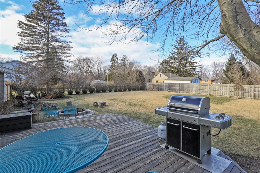 Real Estate Photography - 715 Burris Ave, Lake Bluff, IL, 60044 - Deck