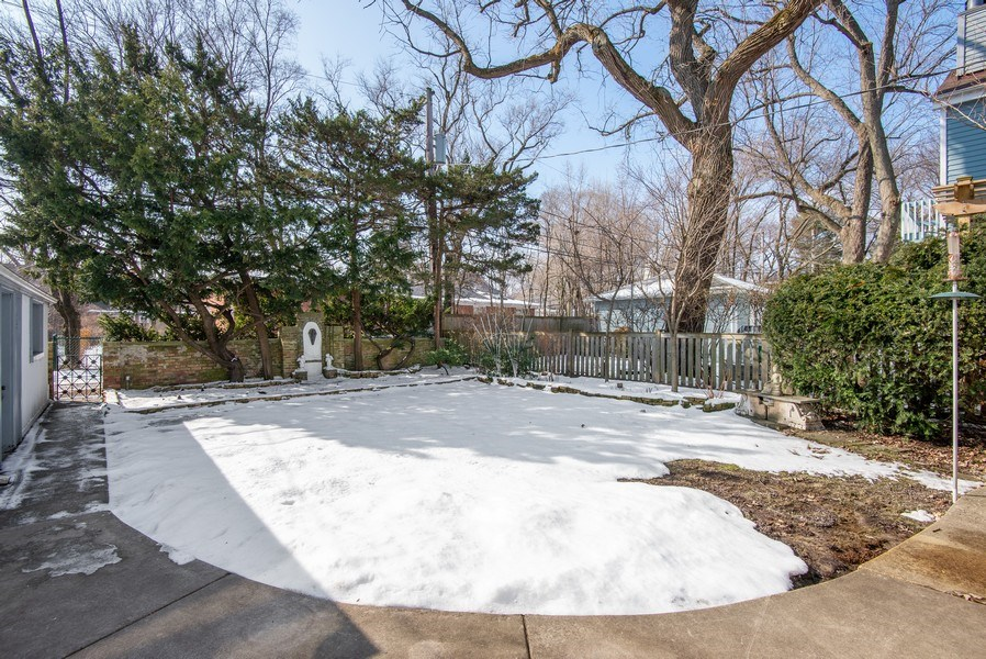 Real Estate Photography - 806 Clinton Place, evanston, IL, 60201 - Back Yard