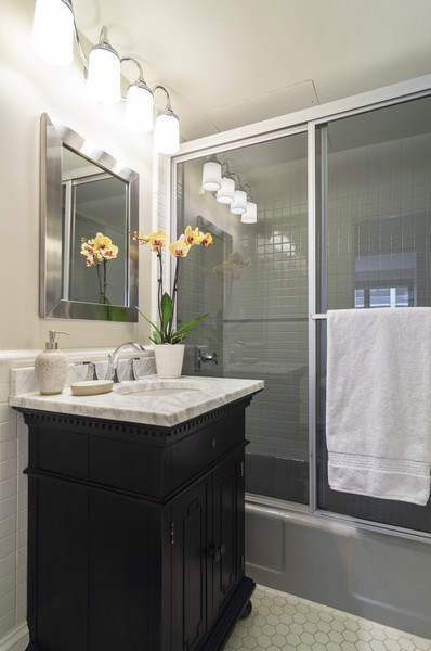 Real Estate Photography - 850 DeWitt, #18A, Chicago, IL, 60611 - Bathroom