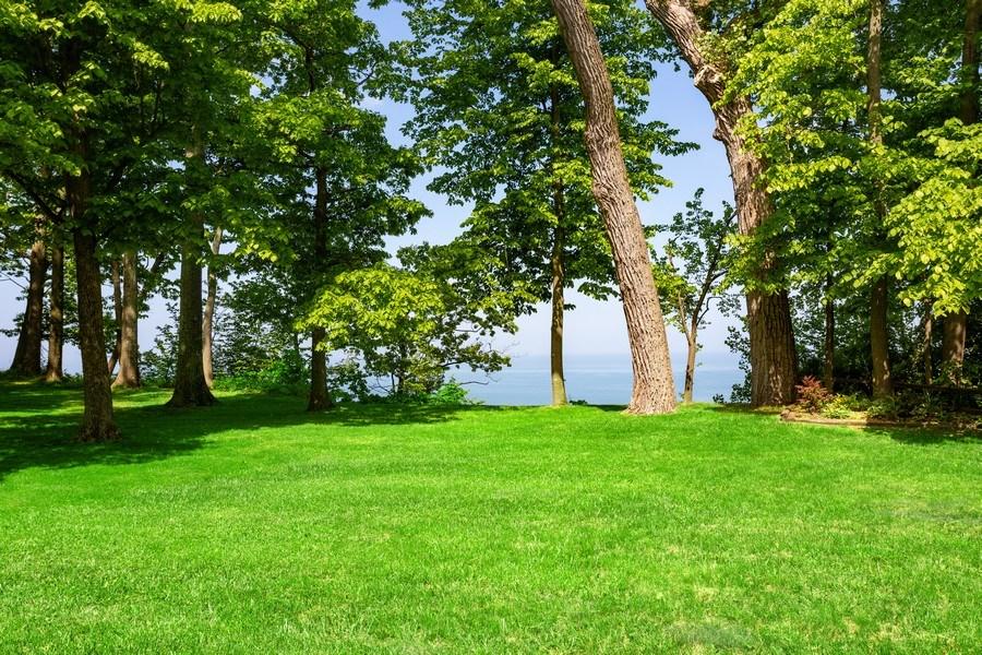 Real Estate Photography - 4486 Greenwood Drive, Benton Harbor, MI, 49022 - Back Yard