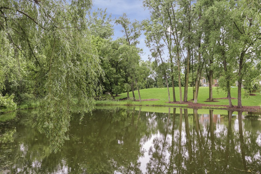 Real Estate Photography - 25130 N Cayuga Trail, Lake Barrington, IL, 60010 - Pond