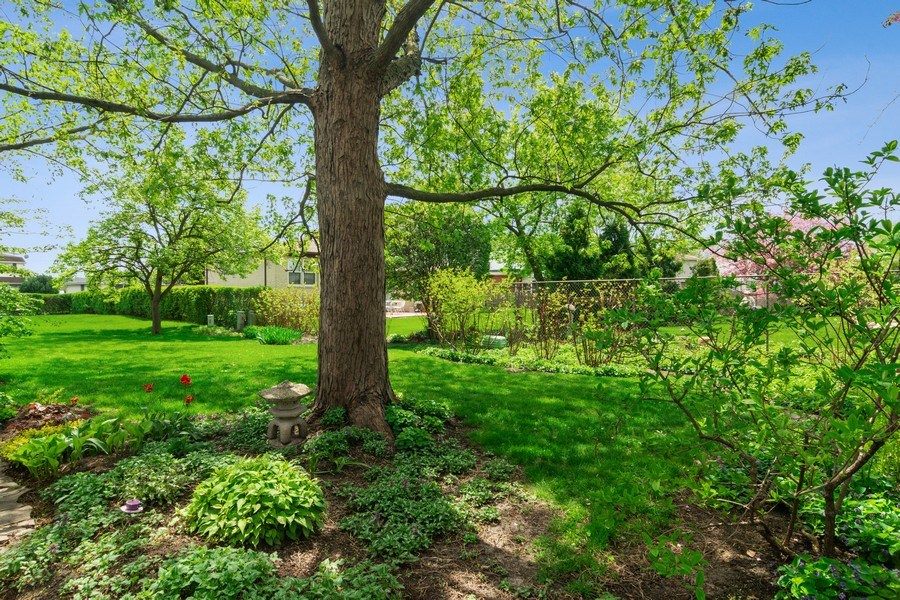 Real Estate Photography - 2308 N Evergreen, Arlington Heights, IL, 60004 - View