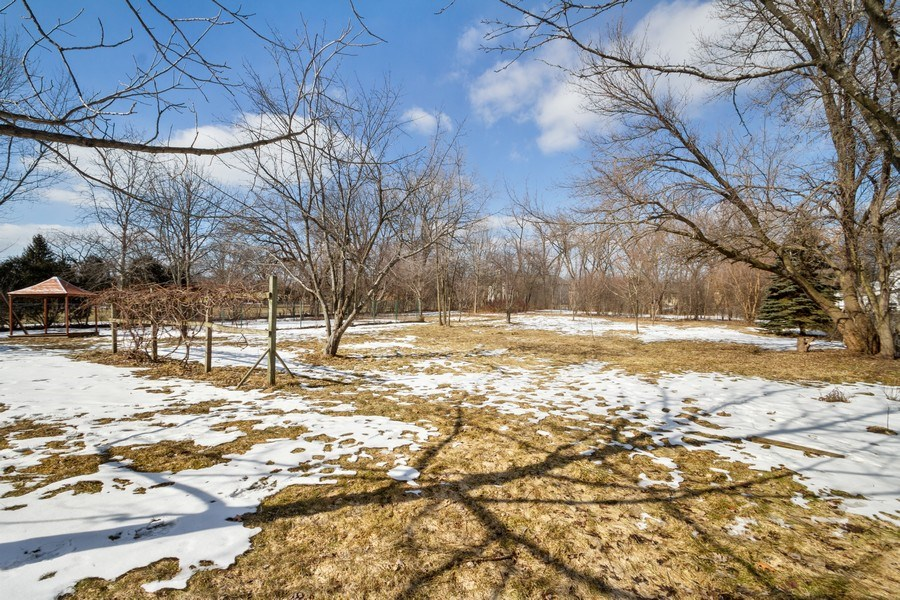 Real Estate Photography - 3508 Countryside Ln, Glenview, IL, 60025 - Back Yard - over 1 acre & backs up to a park!