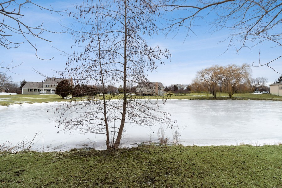 Real Estate Photography - 20945 N Swansway, Deer Park, IL, 60010 - Back Yard