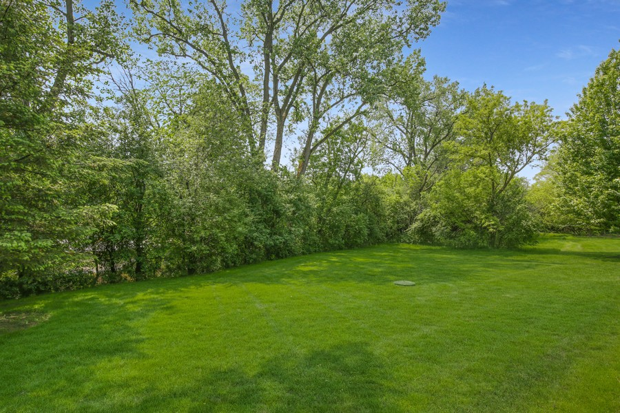 Real Estate Photography - 659 New Bridge Court, Barrington, IL, 60010 - Back Yard