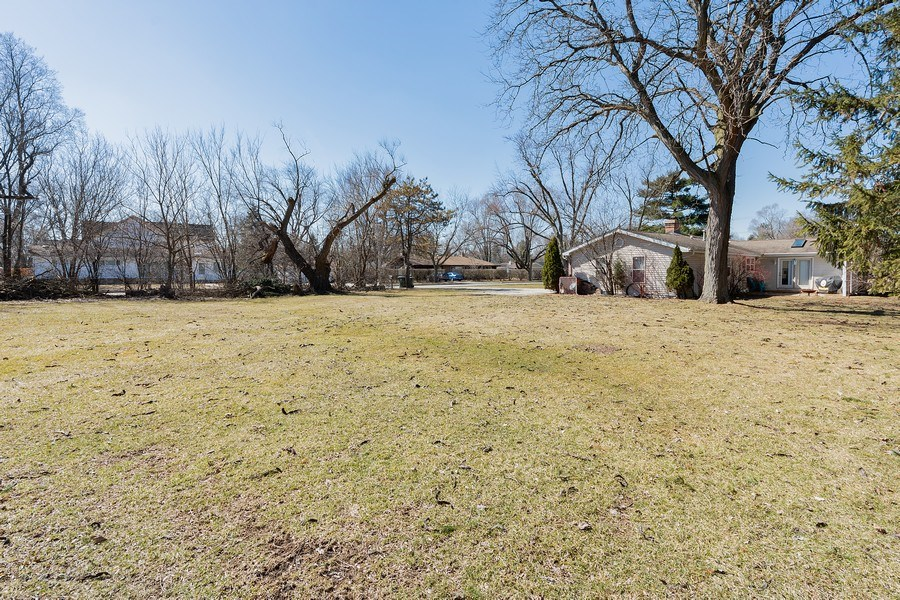 Real Estate Photography - 1750 w Thomas, Arlington Heights, IL, 60004 - Rear View