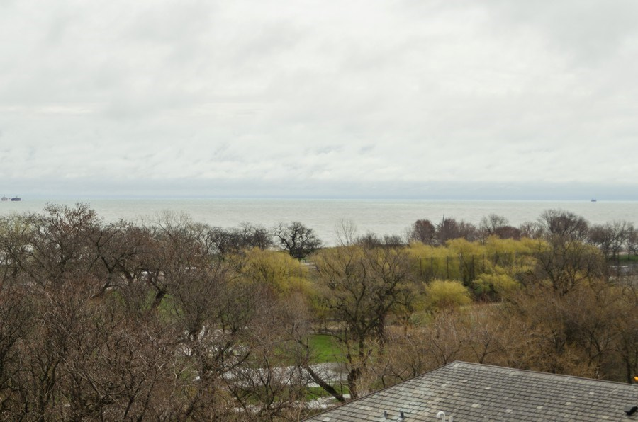 Real Estate Photography - 3100 N Lake Shore Dr, 902, Chicago, IL, 60657 - Lake View