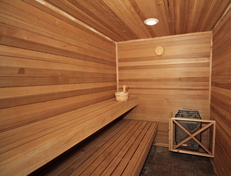 Real Estate Photography - 1655 Forest View Way, Antioch, IL, 60002 - Sauna