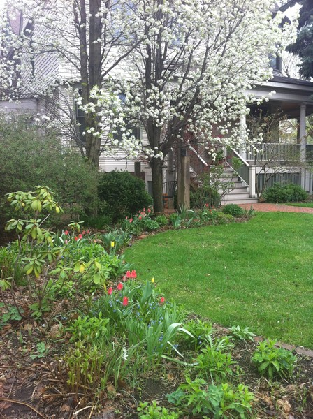 Real Estate Photography - 4101 N Greenview, Chicago, IL, 60613 - Pear Tree and more spring blooms