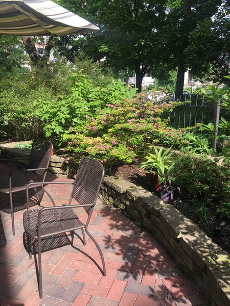 Real Estate Photography - 4101 N Greenview, Chicago, IL, 60613 - Patio Planter close up