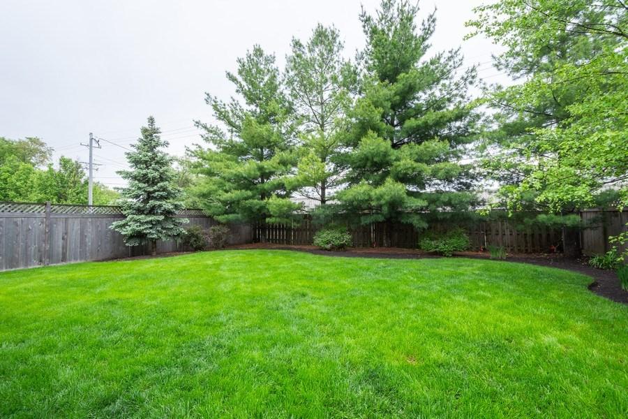 Real Estate Photography - 756 E Sunnyside Ave, Libertyville, IL, 60048 - Back Yard