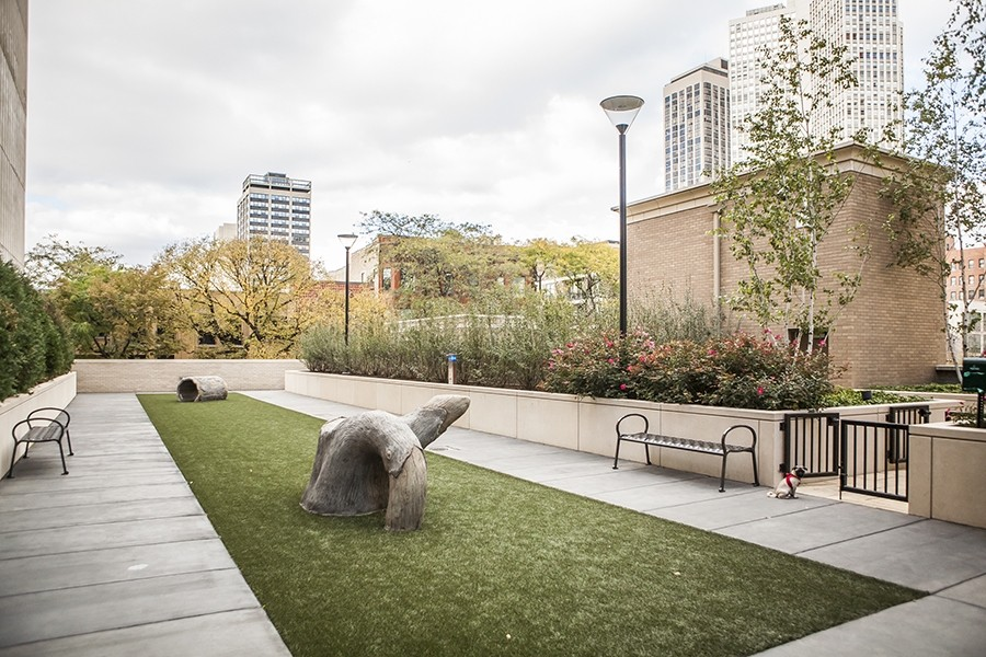 Real Estate Photography - 2550 N Lakeview, N703, Chicago, IL, 60614 - LP2550 Dog Run