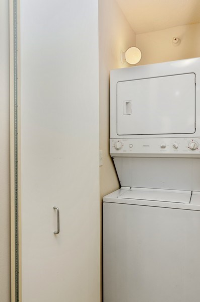 Real Estate Photography - 222 Columbus, Unit 1605, Chicago, IL, 60601 - Laundry Room