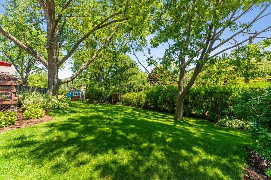Real Estate Photography - 1423 N Chestnut Ave, Arlington Heights, IL, 60004 - Back Yard