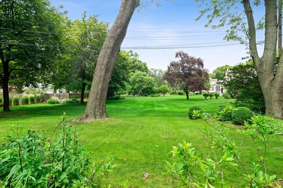 Real Estate Photography - 730 E Hawthorne, Arlington Heights, IL, 60004 - Back Yard