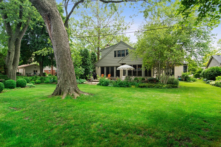 Real Estate Photography - 730 E Hawthorne, Arlington Heights, IL, 60004 - Rear View