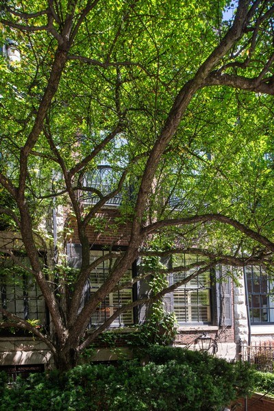 Real Estate Photography - 30 E. Scott St., Chicago, IL, 60610 - Front View