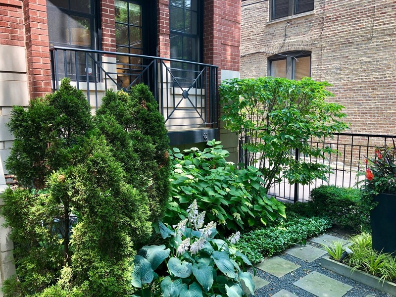 Real Estate Photography - 814 W. Buckingham Ave., Unit 1, Chicago, IL, 60654 - Front Garden