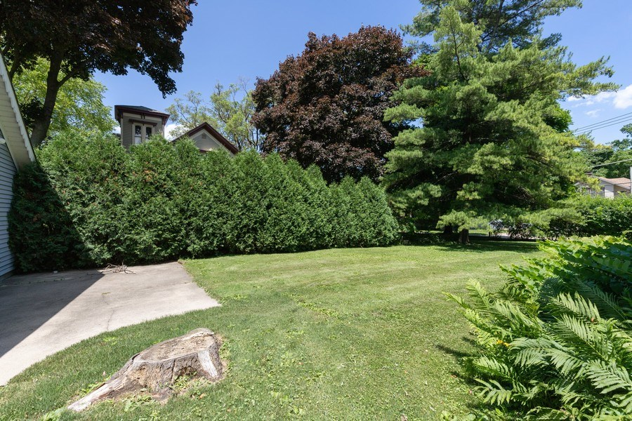 Real Estate Photography - 500 1st St, Waukegan, IL, 60085 - Back Yard