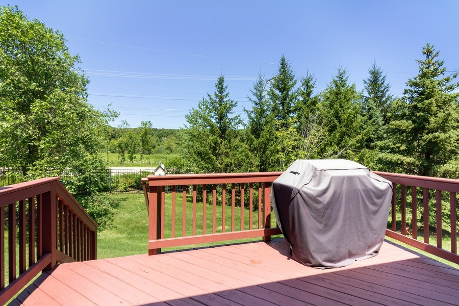 Real Estate Photography - 9252 Dunmore Dr, Orland Park, IL, 60462 - Back Yard