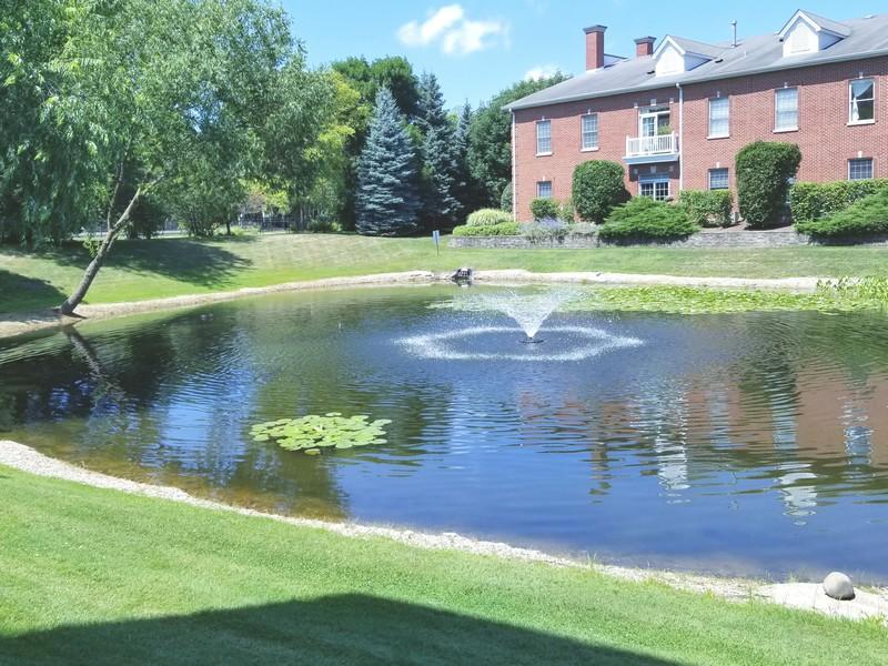 Real Estate Photography - 1220 Depot, Unit 415, Glenview, IL, 60625 - Pond